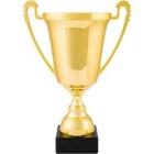 Zawody o mistrzostwo Sekcji Lin